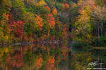 Tennessee images,Norris Lake,Color,Reflections,orange,green,red,serene,fall foliage,tree photos,forest pictures,autumn