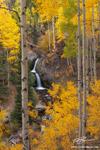Colorado pictures, Nellie Creek Waterfall photos, Aspen Trees, Gold, San Juan Mountains