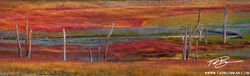 Colorado, colorado fall photos, panorama, panoramas, tree, trees, colorado fall panoramas, red, grass, gunnison national forest, stream, grass