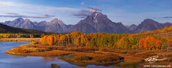 Wyoming, Oxbow Bend photos,mountain images,Fall colors,grand teton photos,Autum picture,Gold Aspen tree,Grand Tetons Photos,Grand Teton National Park photographs,fall photos,reflection,reflections