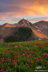Colorado image,Indian Paintbrush, Mountain Photos, San Juan Mountains, Flowers, Sunset, La Plata Mountains photos,Diorite peak pictures
