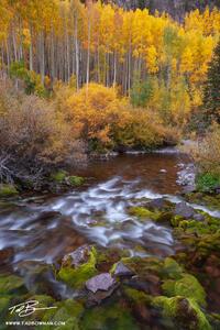 Colorado Rivers, Streams, and Waterfall Photos
