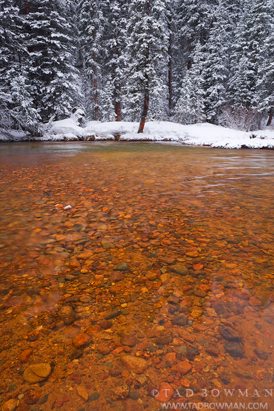 Mountain Photograph, Colorado pictures, Snowy, Rocks, Peaceful, Pine trees, Winter, Stream,brown rocks, photo