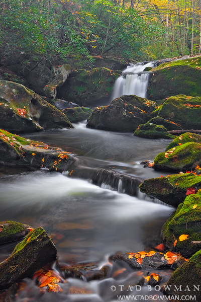 autumn pictures,Mossy,waterfall picture,waterfall pictures, smokey mountains,smoky mountains photos, photo