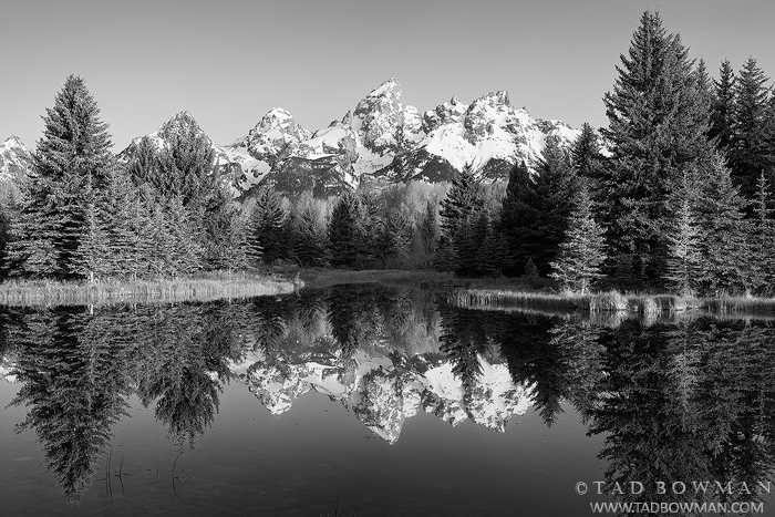 Black and white,Grand Tetons pictures,Schwabacher Landing photos,Grand Teton National Park images,Wyoming,reflection, photo