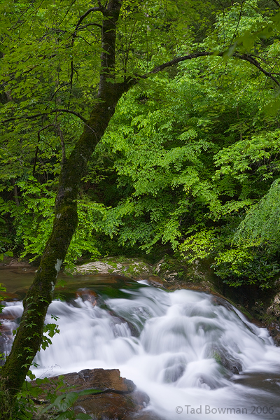 waterfall picture,waterfall pictures,Little River photos, smokey mountains,Smoky mountain waterfall photos,tennessee images, photo