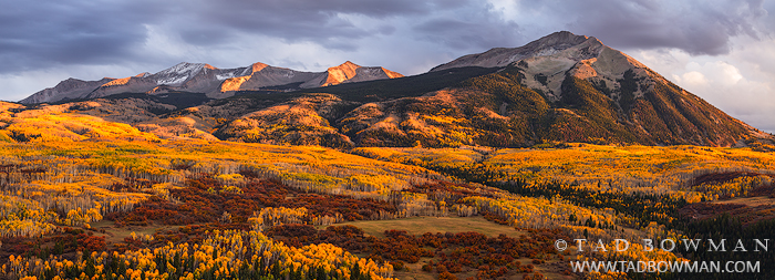 Colorado,fall,autumn,autumnal,sunset,East Beckwith photos,West Beckwith photos,aspen tree pictures,forest,wilderness,panorama images, photo