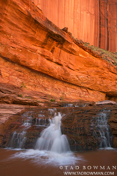 Coyotte Gulch pictures,Coyote Gulch photos, Stream, Water, Red Rocks, Waterfall, Escalante National Monument images, photo
