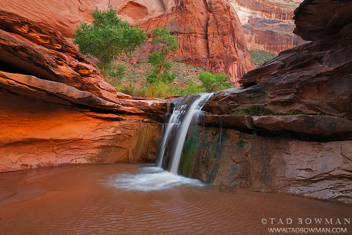 Utah,waterfall pictures, Coyote Gulch Pictures,Coyote Gulch photos,Escalante National Monument images, photo