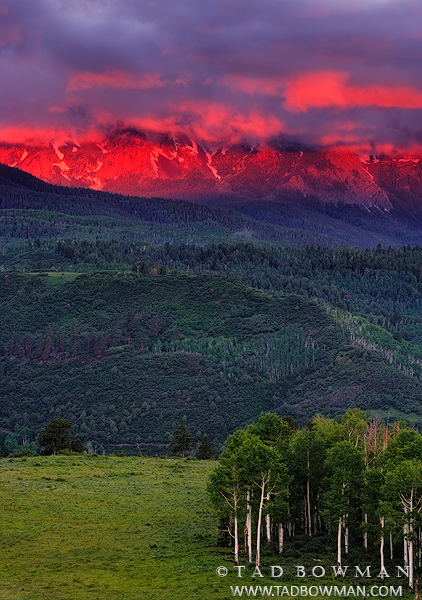 Sneffels Range photos, Green Aspen Trees,pink sunrise, mountain picture, mountains pictures, colorado images, photo