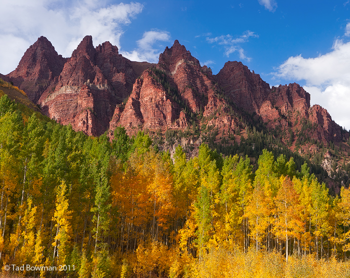 Colorado pictures,Sievers Mountain photos,Sunset,Aspen Trees,Sunset,White River National Forest image,golden, photo