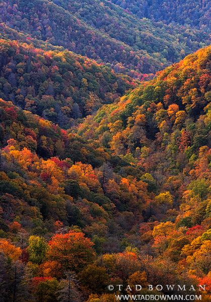 autumn picture,smokey mountains photos,Appalachian Mountains picture,smoky mountains pictures,fall images,, photo