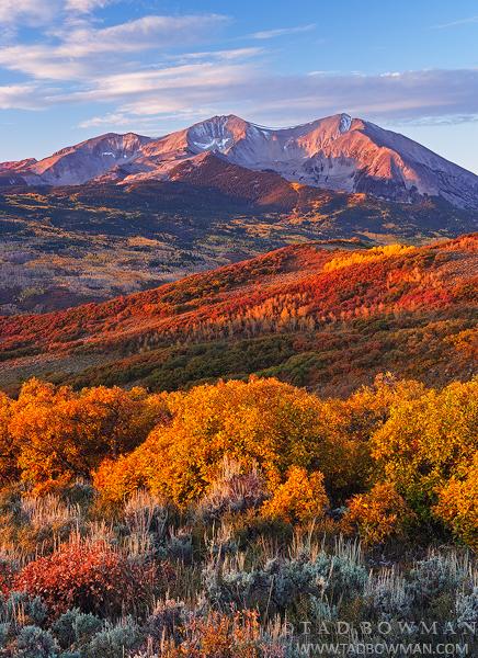 Mount Sopris photos,Fall,Autumn,aspen trees,scrub oak, Colorado pictures, White River National Forest image, sunrise,orange,gold, photo