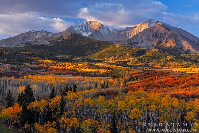 Colorado pictures,Mount Sopris photos,Fall,Autumn,Autumnal,fall foliage,colors,colorful,Colorado Mountains,grove,mt. sopris,colorado mountain photos, photo