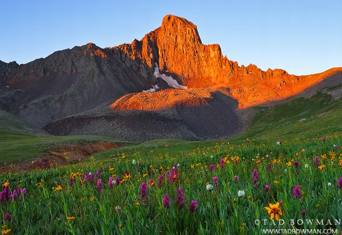Colorado Mountain Photos,Wetterhorn Peak Photographs, Uncompahgre Wilderness,Sunrise,Wildlflowers,Wetterhorn Peak photos, photo