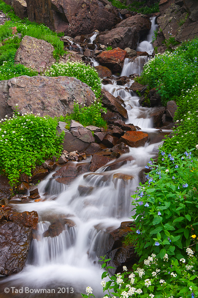 Wildflowers, Cascade, Colorado waterfall photos, Mountain photo, Picture, Image, Waterfall, photo