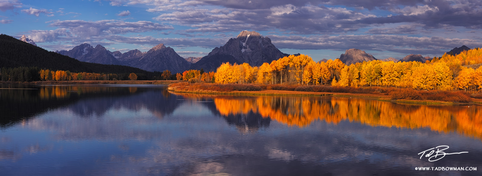 Wyoming, Oxbow Bend photos,mountain images,Fall colors,grand teton pictures,Autum picture,Gold Aspen tree,Grand Tetons Photos,Grand Teton National Park photographs,fall photos,reflection,reflections, photo