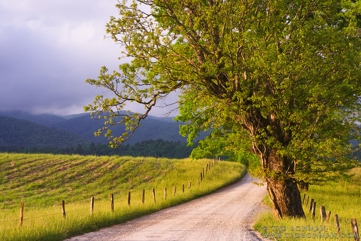 This Tennessee mountain picture depicts an inviting country road in Cades Cove located in the Smoky Mountains