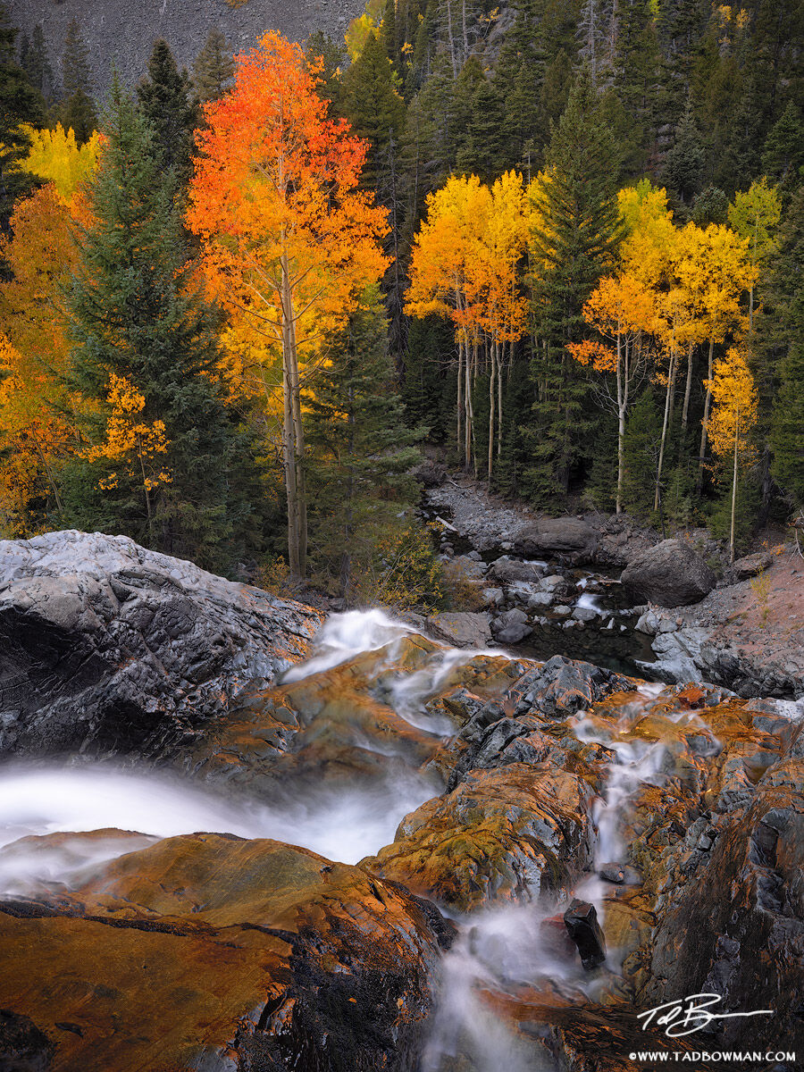 This Colorado fall photo depicts a waterfall flowing over a ledge with colorful aspen trees at the bottom.
