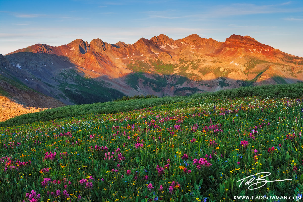 La Plata Mountains Photos,mountain picture,Mountain sunrise, Colorado mountain Wildflowers,Colorado image,La Plata Mountains pictures, photo