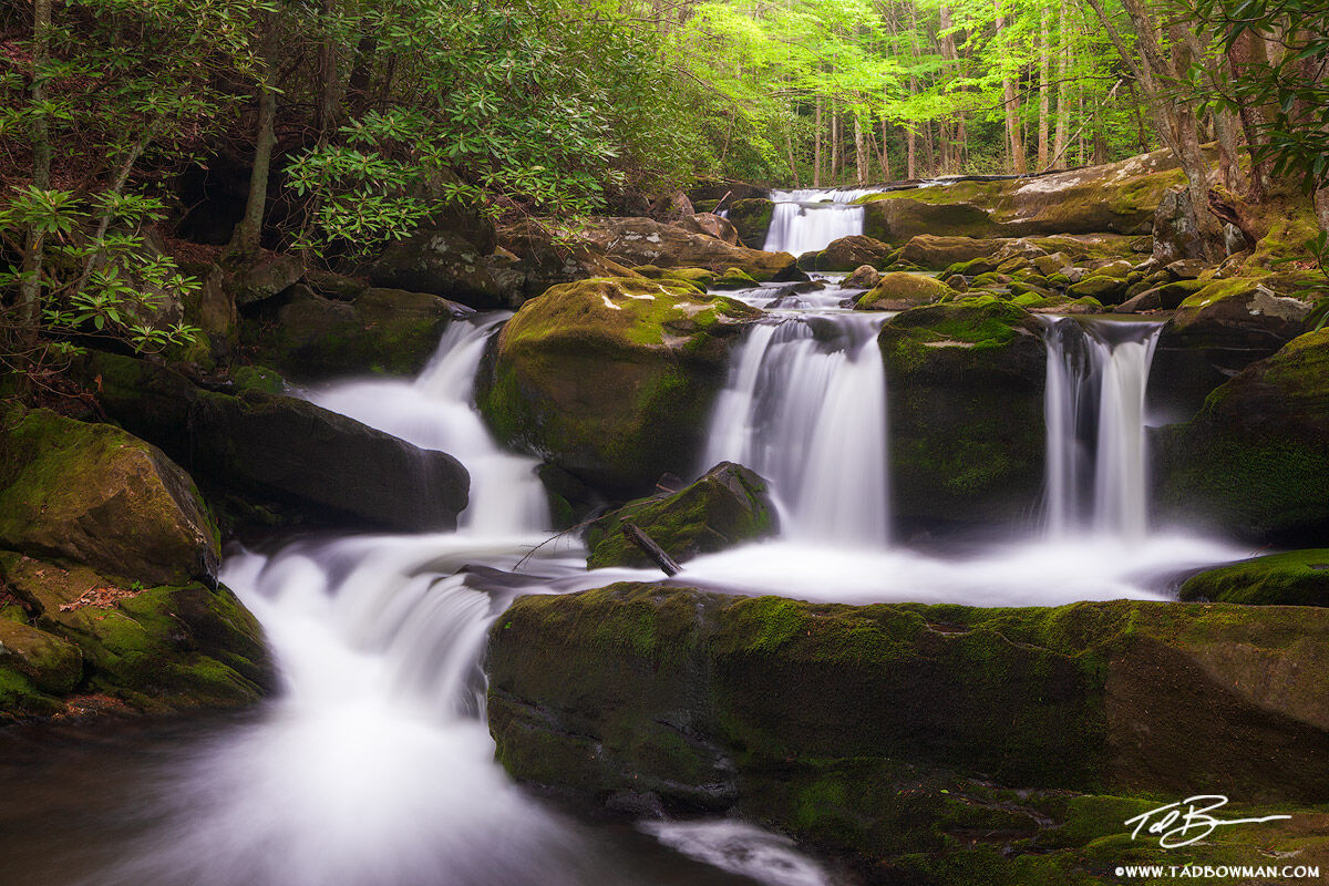 Tennessee images,Green,Mossy,waterfall photos,waterfall pictures,smokey mountains,Smoky mountains waterfall pictures
