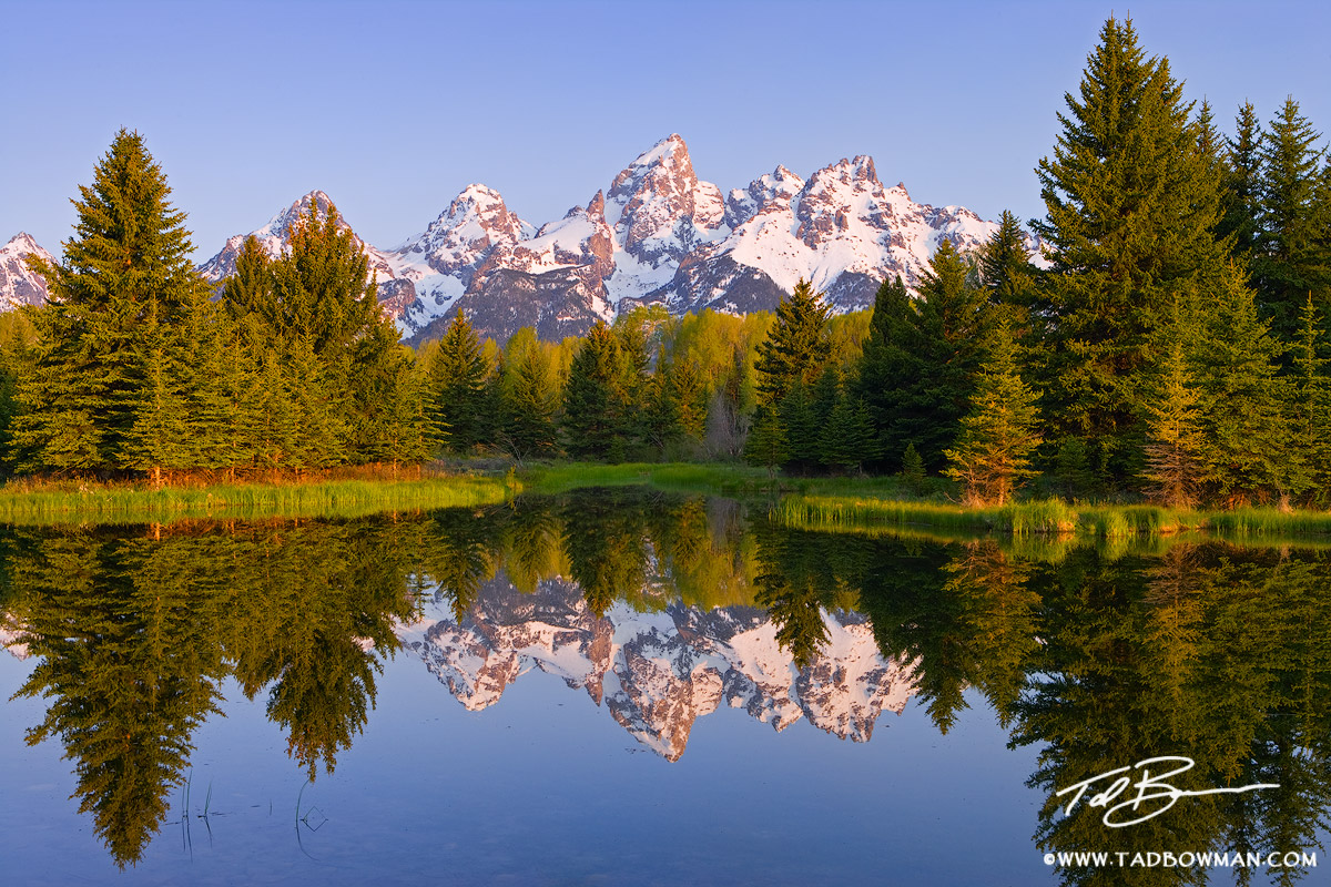 Grand Teton Reflections photo,Schwabacher Landing Photos, Peaceful pond photo,Grand Teton pictures,Sunrise,tetons images, photo