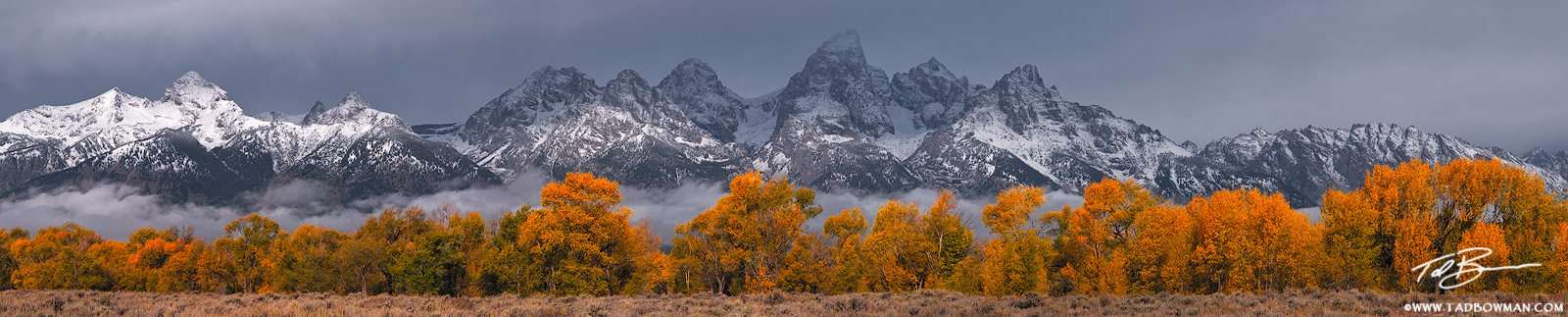 Wyoming, Grand Tetons, Grand Teton National Park, Grand Tetons photos, Grand teton national park photos, panorama, panoramas, sunrise, fall, autumn, fall foliage, photo