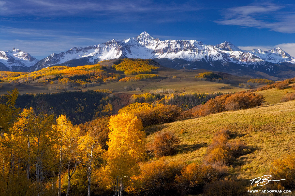 This Colorado mountain picture depicts a colorful autumn mountain sunrise of Wilson Peak near Telluride with gold aspen trees...