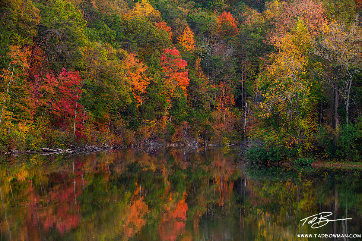 Tennessee images,Norris Lake,Color,Reflections,orange,green,red,serene,fall foliage,tree photos,forest pictures,autumn, photo