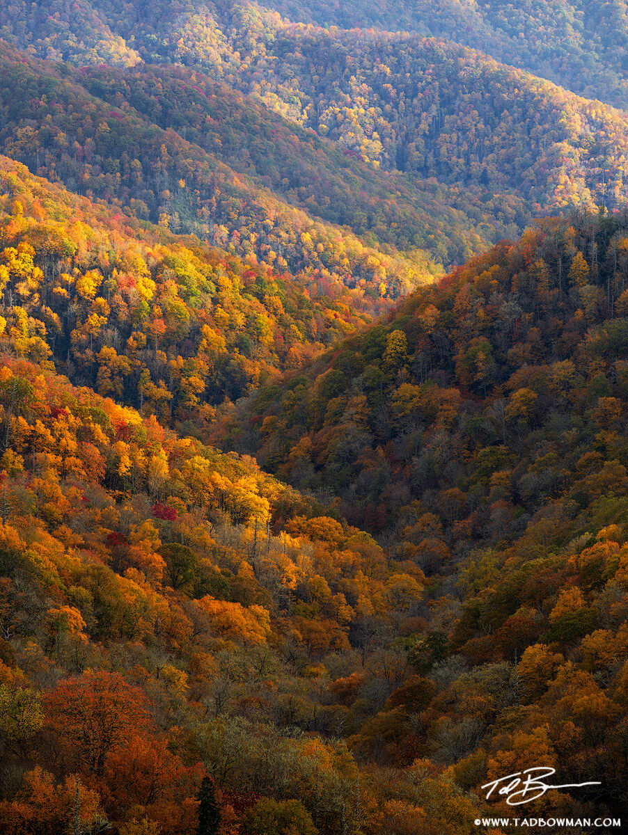 Tennessee, autumn picture,smokey mountains photos,Appalachian Mountains ,smoky mountains pictures,fall images, fall foliage, autumn, forest, colorful, Great Smoky Mountain National Park photos, photo
