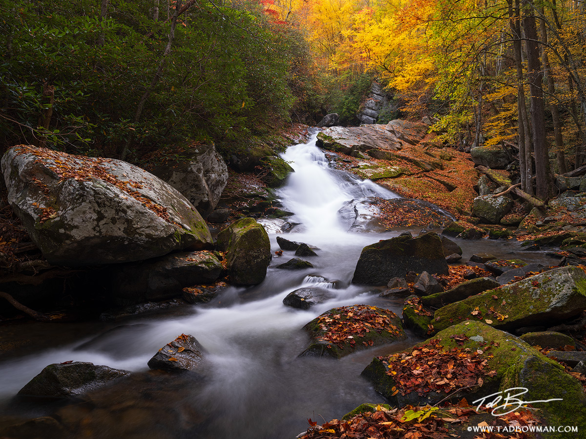 This Smoky Mountains photo depicts a waterfall cascading over rocks with vibrant fall foliage in the background
