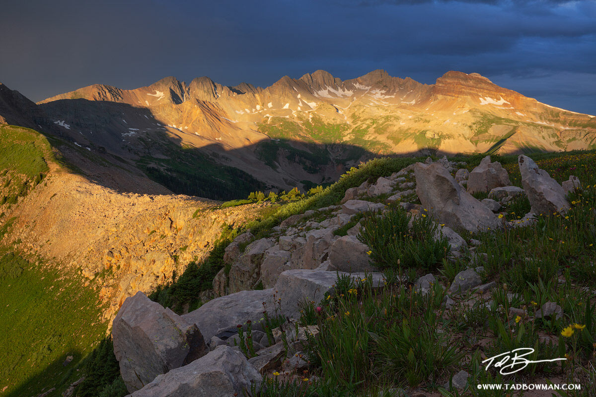 This Colorado mountain photo depicts a gold glow on the La Plata mountains with jagged rocks and wildflowers in the foreground...