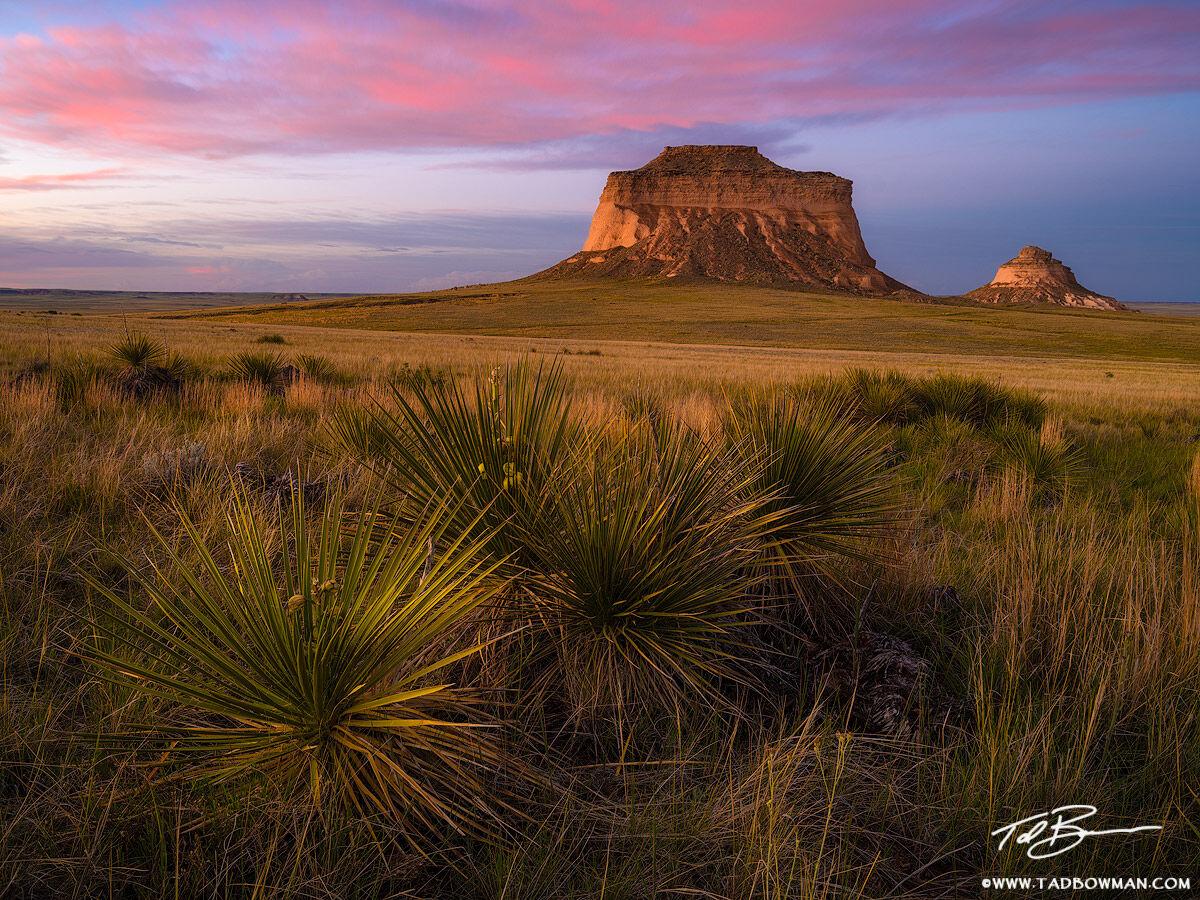 Colorado, Pawnee Buttes, Grasslands, Prairie, Colorado Grasslands photo, Sunset, pink, spring, photo
