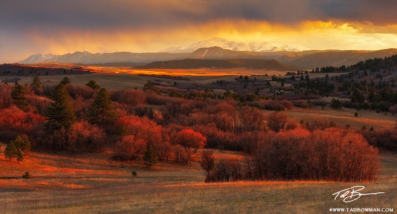 This Colorado panorama depicts breaking clouds over a snowy Pike's Peak with scrub oak illuminated in the foreground