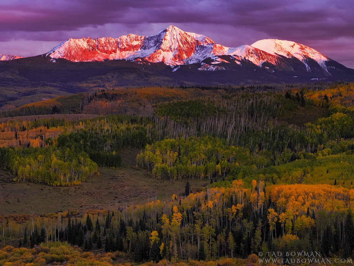 Colorado, Colorado Mountain Photos,fall,autumn,gold,orange,purple,san miguels, mountains,uncompahgre national forest,sunset, photo