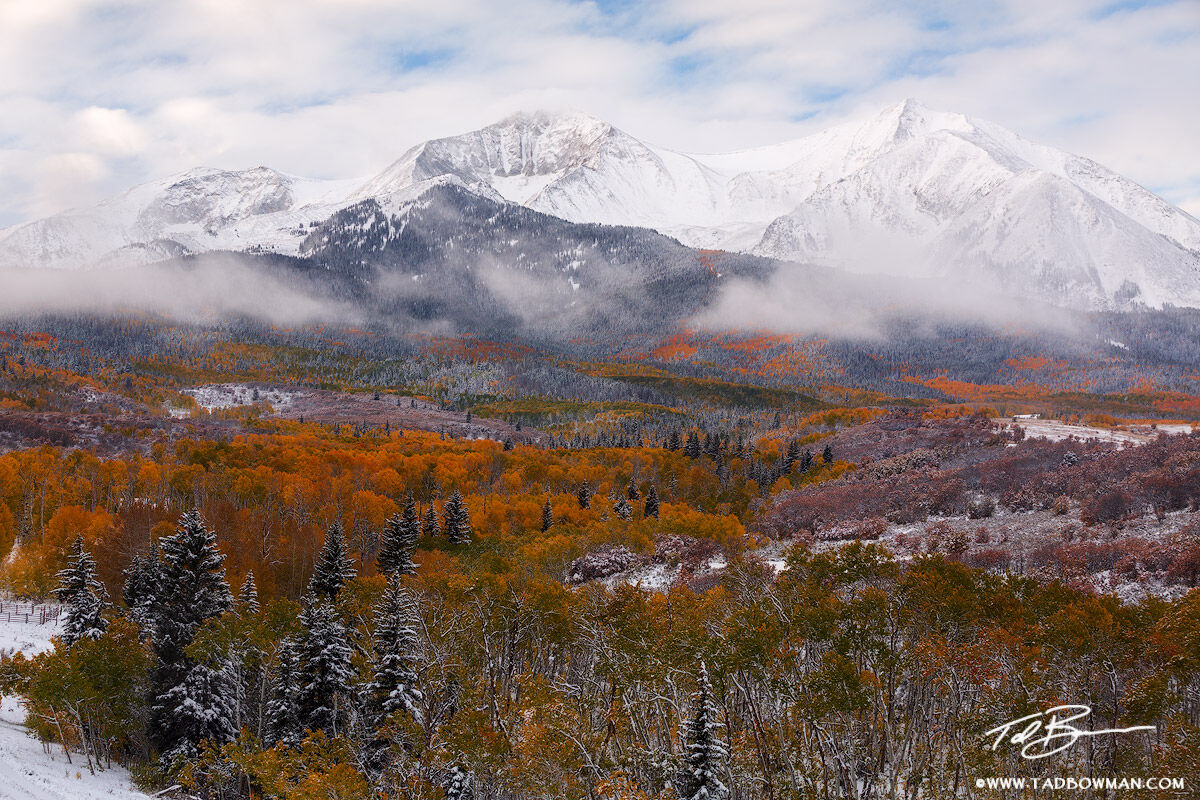 Colorado pictures,Mount Sopris photos,Fall,Autumn,Autumnal,fall foliage,colors,colorful,aspen tree,aspen trees,colorado mountain photos, Mount Sopris picture, Mount Sopris Images,mt. sopris, photo