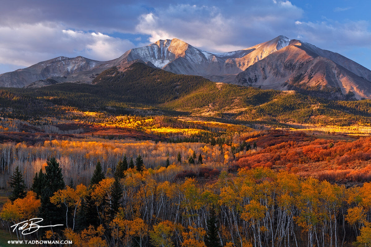 Colorado pictures,Mount Sopris photos,Fall,Autumn,Autumnal,fall foliage,colors,colorful,Colorado Mountains,grove,mt. sopris,colorado mountain photos, photo
