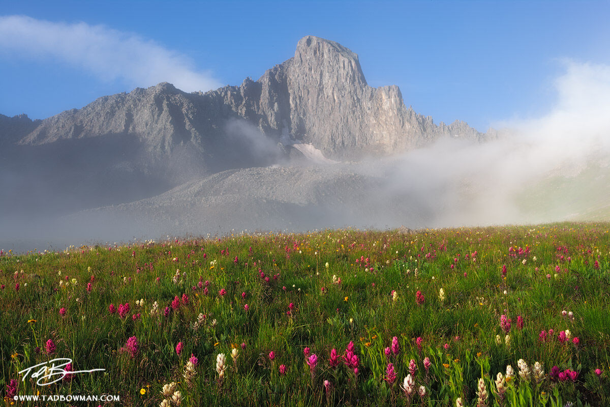 Sunrise,Wildflowers,Photograph,Mountain pictures,Colorado image,fog,Colorado Mountains,Wetterhorn Peak photos, photo